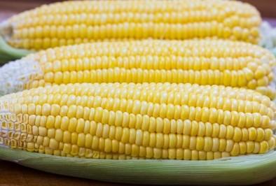 САЩ убеждават ЕС да започне да купува ГМО продукти