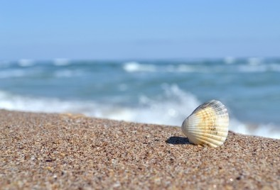 Плажовете заразни