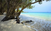 Какви са ползите за здравето ни от морската вода