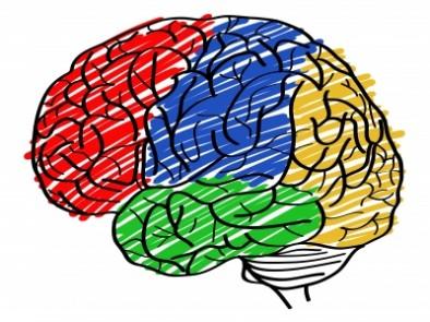 8 природни средства за подобряване на паметта – част 1