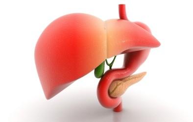 Какви са първите признаци при проблем с черния дроб