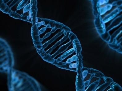Стволови клетки спасяват при левкемия и анемия