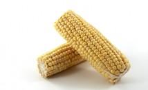 С какво е полезна царевицата за здравето ни