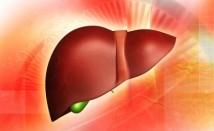 Първи признаци при омазнен черен дроб (стеатоза)