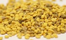 Пчелен прашец – протеинът с многобройни ползи за здравето ни