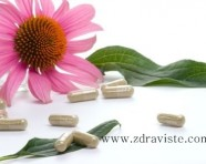 Echinacea is as effective as Tamiflu for influenza