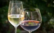 Виното – източник на витамини и минерали – част 1