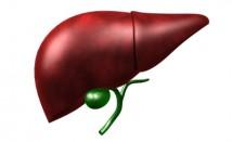 Какви са ползите за здравето ни от прочистването на черния дроб