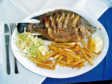 С какво е полезна рибата тилапия за здравето ни