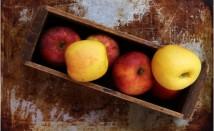 Пектин срещу висок холестерол и диабет, здравословни ползи